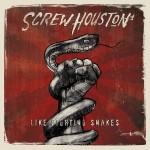 like-fighting-snakes-cover_digital